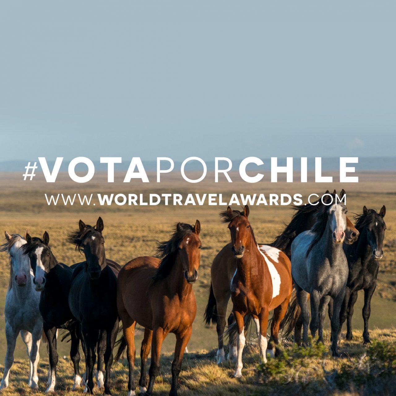 Vota por Chile: una oportunidad para que el turismo aventura se mantenga en la mente de los turistas que volverán