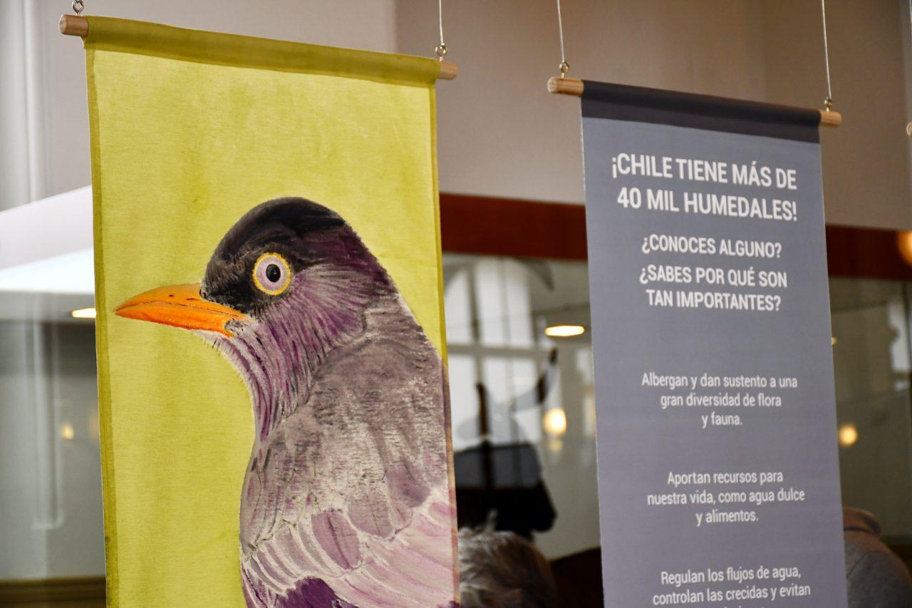 Museo Nacional de Historia Natural presenta la exposición Desplazados